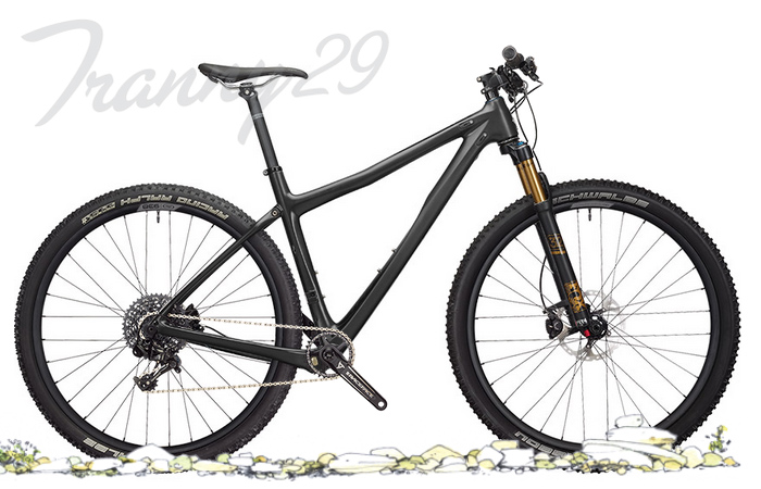 Bicicleta Ibis Tranny 29